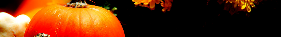 wide-pumpkin.png