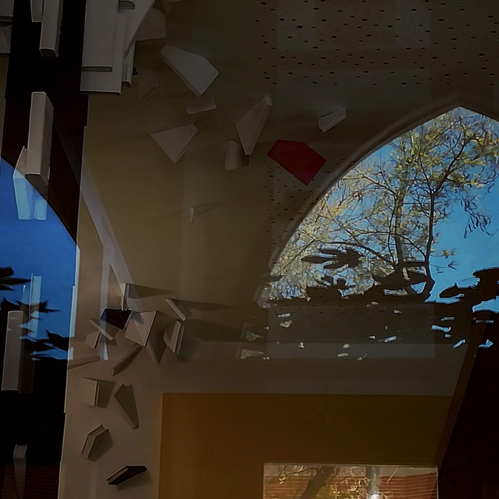 LIBERUM LIGNO II - árbol libre