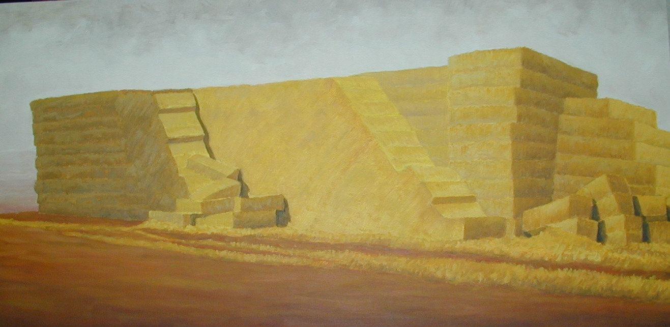 ENFOQUE C2 2003