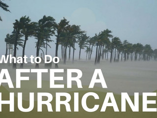 What To Do After A Hurricane
