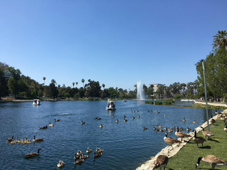 On the Scene at the Echo Park Lake Reopening