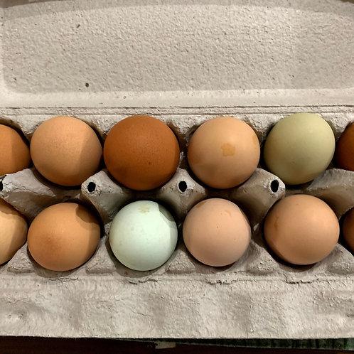 Pickled Boiled Eggs