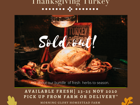 No More Thanksgiving Turkey Orders