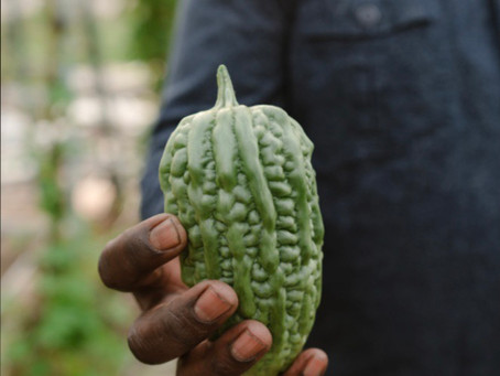 Connections: Farmers and Chefs Linked by Food