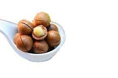 Macadamia%25C2%25A0_edited_edited.jpg
