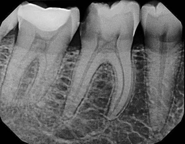 Rx Dental.jpg