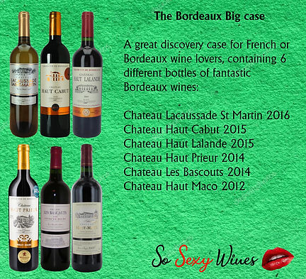 Bordeaux Big Case.jpg
