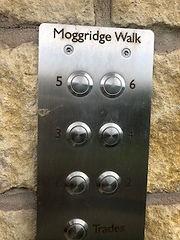 Moggridge%20walk%20bell1_edited.jpg