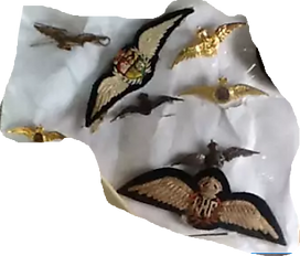 wings brooches.png
