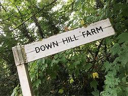 Downhill farm.jpg