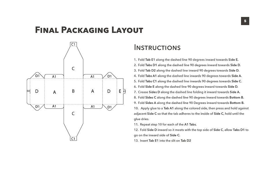 Stitt_IND377_PackagingProblem_ProcessBoo