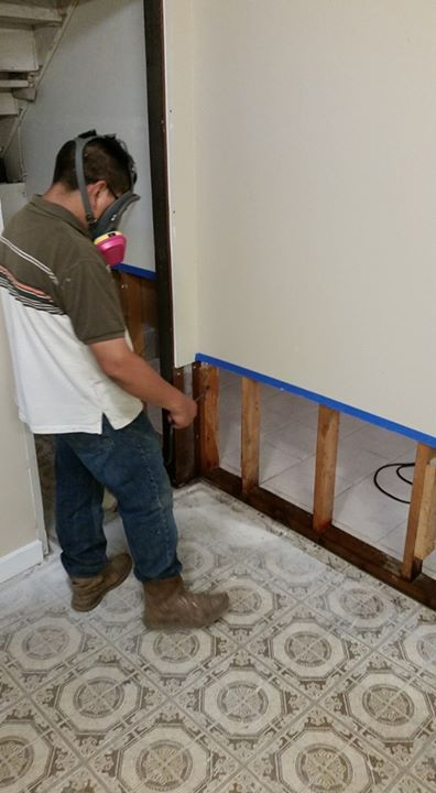 Water Damage/ Mold Removal