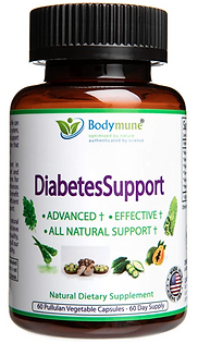Natural Diabetes Support
