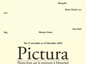 Pictura : Constructions of the Void