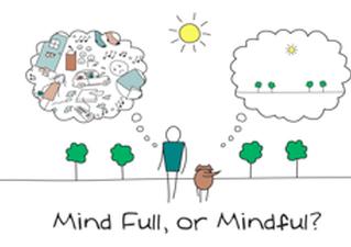 La Méditation de Pleine Conscience au service de l'Entreprise ?