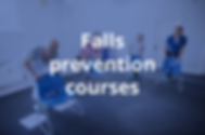 Falls Prevention Courses.png