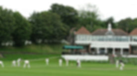 Cricket Cover Photo.jpg