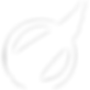 BizSoc White Logo Transparent.png
