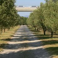 19 TGV à Vernègues