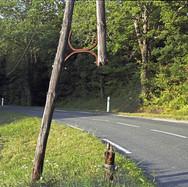 11 Dordogne.jpg