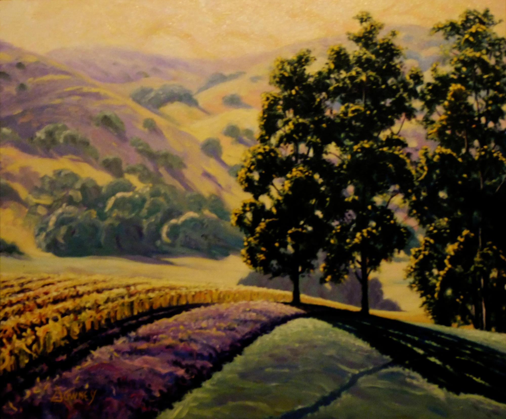 Carneros Hills Petaluma- Carl Downey