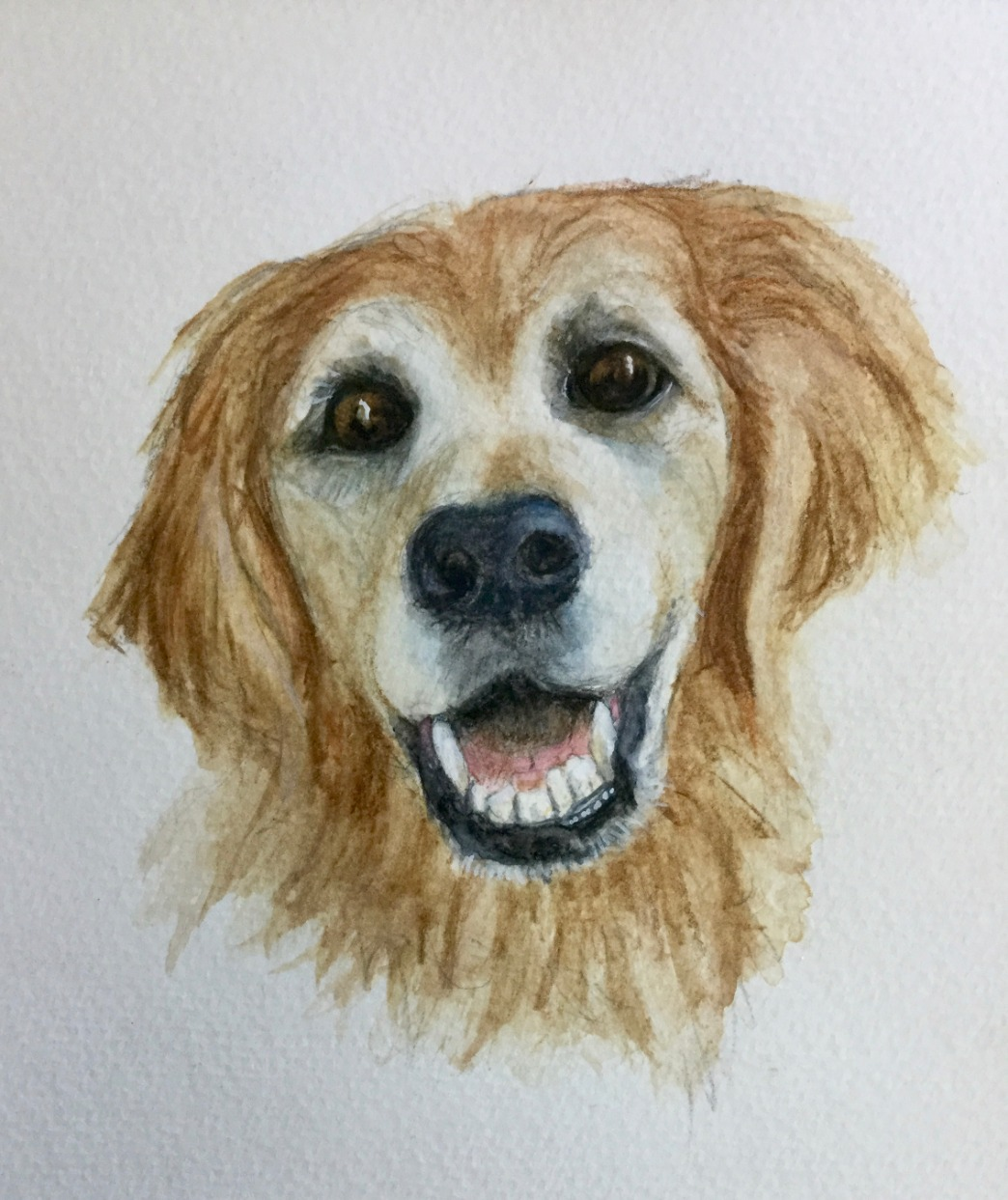Nellie by Winnie Nemiroff