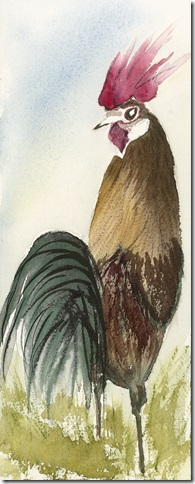 Wild Kauai Rooster by Grace Fong