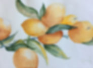 Lemons 11x7.jpg