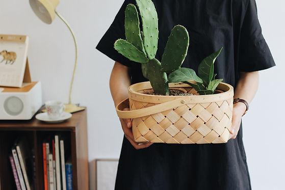 Frau hält Pflanze