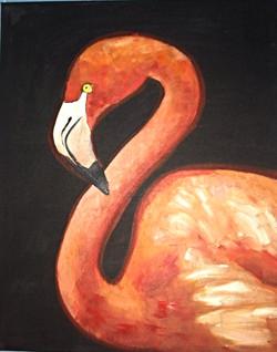 #67-Flamingo