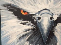 #B08-Eagle