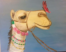 H11 Hump Day, The Camel