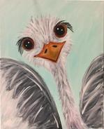 G27 The Baby Ostrich