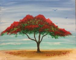 E-9 The Flamboyan tree