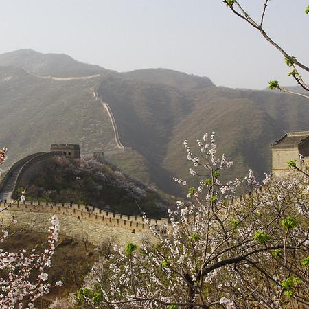 Grande Muraille CHINE 2011-Copyright P.T