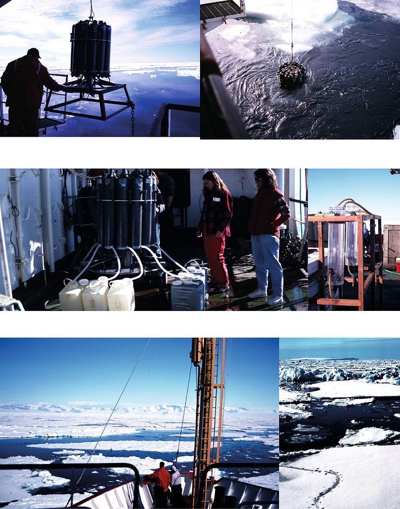 Montage ROSS SEA-6.jpg
