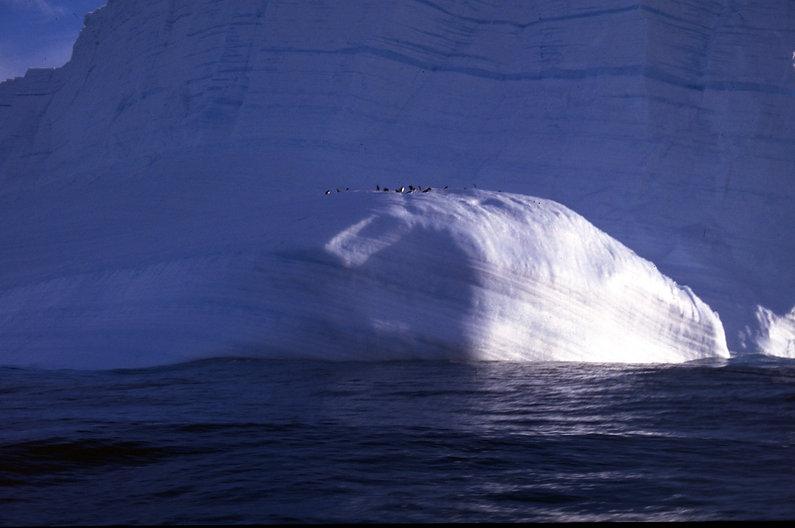 37_Apsara 3 iceberg 5006.jpg
