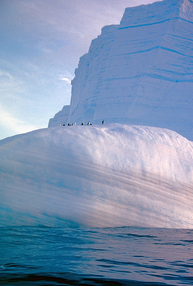 Iceberg-Copyright-P.TREGUER.jpg