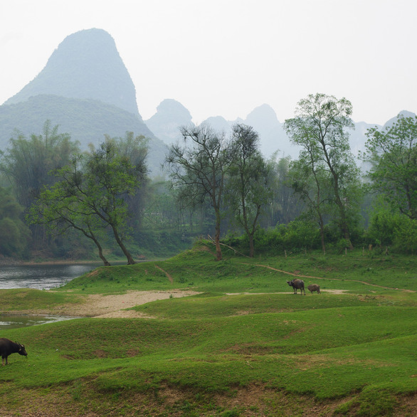 Chine Quilin-Copyright P.TREGUER.jpg