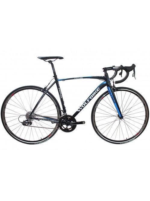 Bicicleta Wolfbike Proal X1 Apex 10v