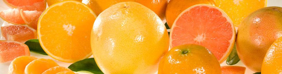fruit-wide.jpg