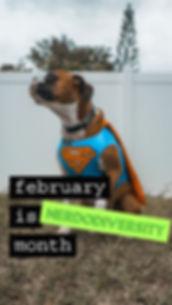 Feb Nerdodiversity month.jfif