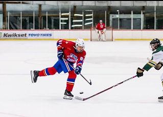 Los Al hockey.JPG