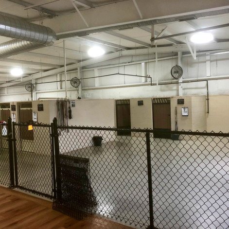 Kennel Area 2 .jpg