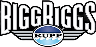 logo_biggriggs_color_2016_edited.png