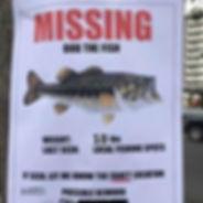 Missing Bob the Fish Poster