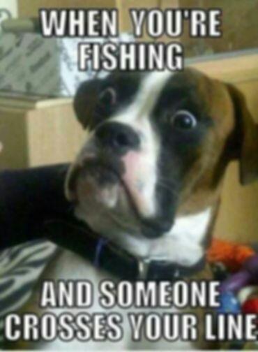 Dog gone funny fishing dog.