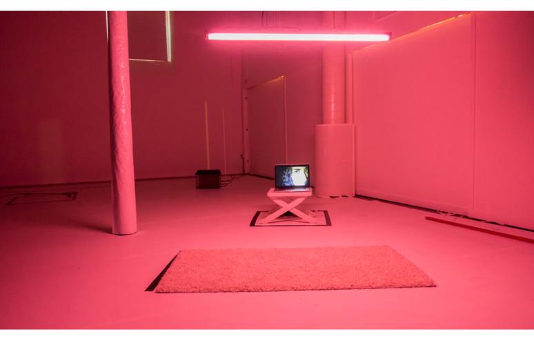 EIJF_pink.jpg