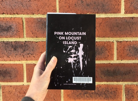 Book Club April Pick: Pink Mountain on Locust Island, by Jamie Marina Lau