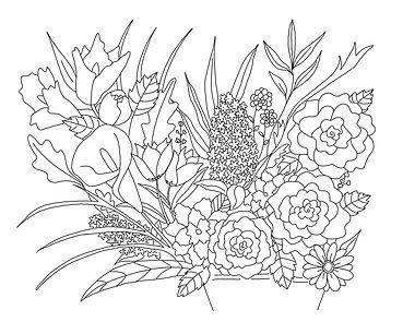 Floral-Coloring-Sheet--Nicole-Walsh-web.